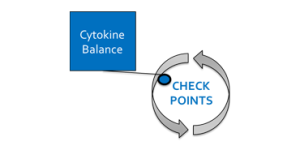 CheckpointA(1)