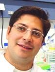 Prof. Dr. Triantafyllos Chavakis